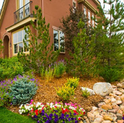 Complete Design and  Install Landscaping